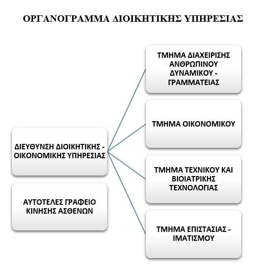 Οργανόγραμμα Διοικητική Υπηρεσία