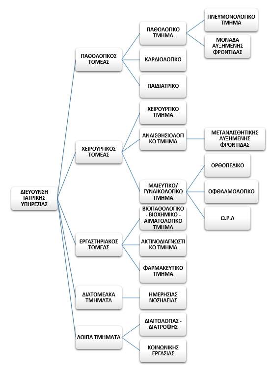 Οργανόγραμμα Ιατρική Υπηρεσία