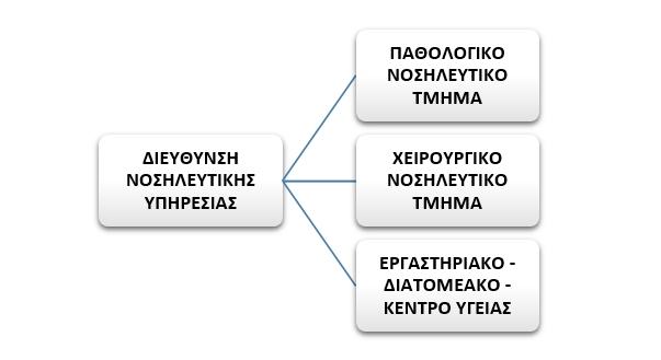 Οργανόγραμμα Νοσηλευτική Υπηρεσία